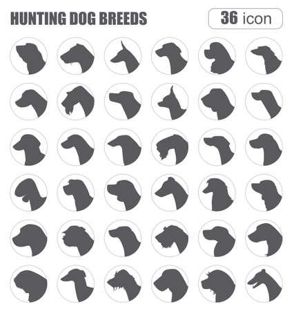 hunting dog: Dog breeds. Hunting dog set icon. Flat style. Vector illustration