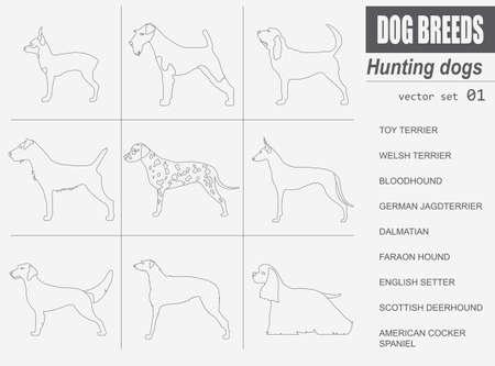 Honden rassen. Jachthond set icoon. Vlakke stijl. vector illustratie Stockfoto - 55546536