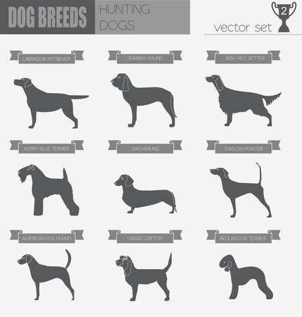 bloodhound: Dog breeds. Hunting dog set icon. Flat style. Vector illustration