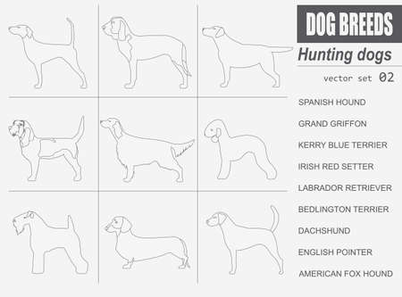 fox terrier: Dog breeds. Hunting dog set icon. Flat style. Vector illustration