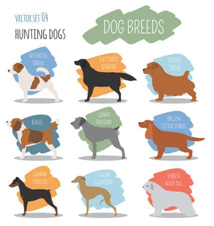 Honden rassen. Jachthond set icoon. Vlakke stijl. vector illustratie Vector Illustratie