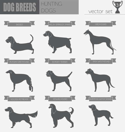 kerry blue terrier: Dog breeds. Hunting dog set icon. Flat style. Vector illustration