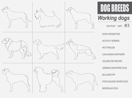Races de chiens. Travailler (regarder) jeu de chien icône. le style plat. Vector illustration Banque d'images - 56920669
