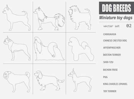 Dog breeds. Miniature toy dog set icon. Flat style. Vector illustration Illustration