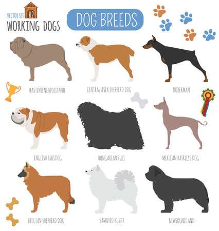 bullmastiff: Dog breeds. Working (watching) dog set icon. Flat style. Vector illustration Illustration