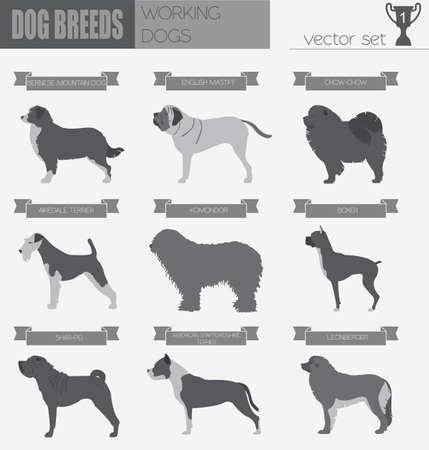 Dog breeds. Working (watching) dog set icon. Flat style. Vector illustration Illustration