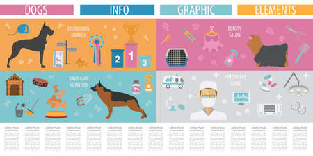 miniature collie: Dog info graphic template. Heatlh care, vet, nutrition, exhibition. Vector illustration