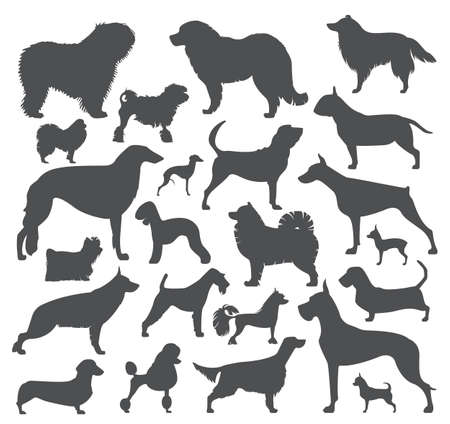 bloodhound: Dog icon set. Heatlh care, vet, nutrition, exhibition. Vector illustration