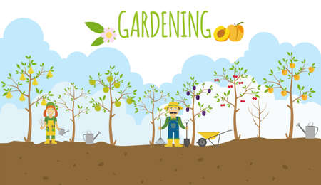 Árboles frutales. Jardín. Conjunto del icono. ilustración vectorial