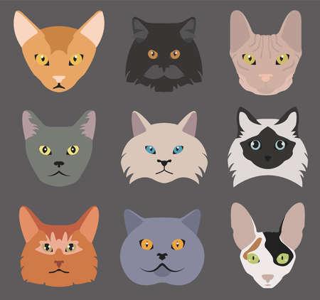 bobtail: Cat breeds icon set flat style. Vector illustration