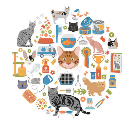 bobtail: Cat characters and vet care icon set flat style. Vector illustration