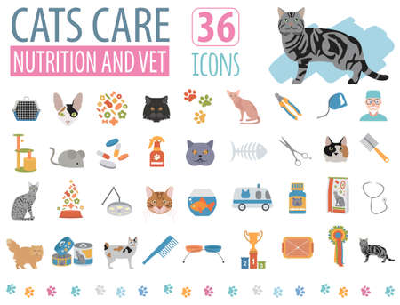 birman kitten: Cat characters and vet care icon set flat style. Vector illustration