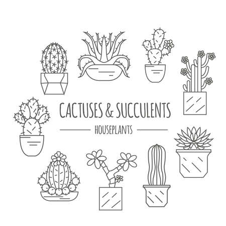 Cactuses and succulents icon set. Houseplants. Thin line design. Vector illustration