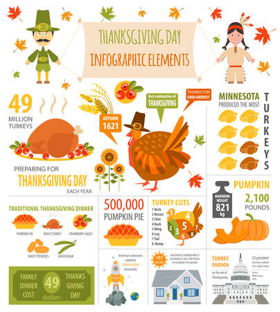 Thanksgiving day, interesting facts in infographic. Graphic template. Vector illustration