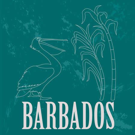 sugarcane: Barbados national symbols. Pelican; sugarcane. Retro styled image. Vector illustration