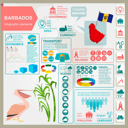 sugarcane: Barbados infographics, statistical data, sights. Pelican, sugarcane, national symbol. Vector illustration Illustration