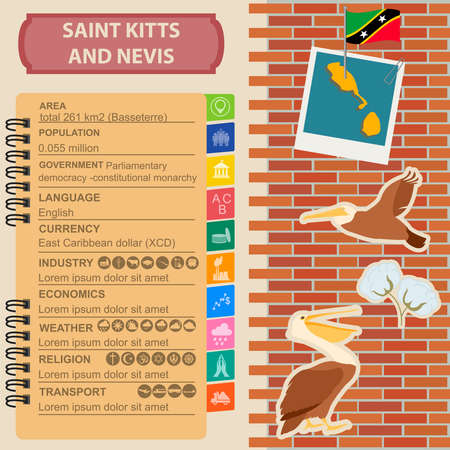 national symbol: Saint Kitts and Nevis infographics, statistical data, sights. Brown pelican, cotton flower, national symbol. Vector illustration
