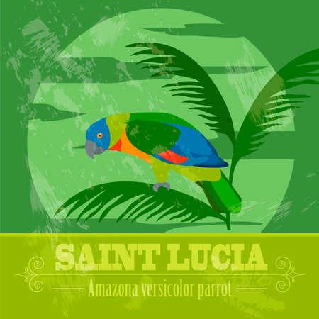 versicolor: Saint Lucia national symbols. Amazona versicolor parrot. Retro styled image. Vector illustration