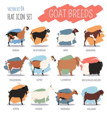 Goat breeds icon set. Animal farming. Flat design. Vector illustration