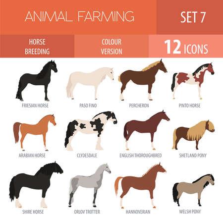 Pferdezucht-Icon-Set. Bauernhoftier. Flaches Design. Vektor-Illustration