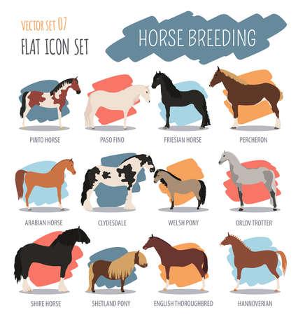 shire: Horse breeding icon set. Farm animal. Flat design. Vector illustration Illustration