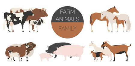 Farm animall family collection. Cattle, sheep, pig, horse, goat icon set. Flat design. Vector illustration Illustration