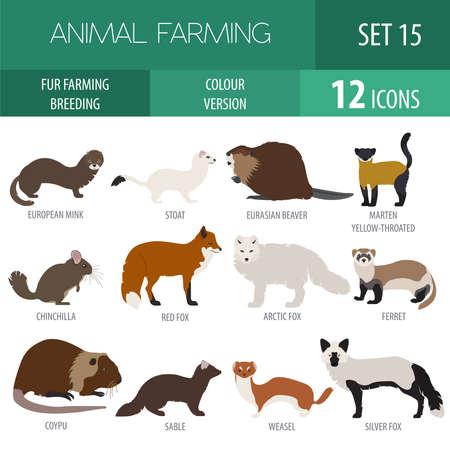 sable: Fur farming. Flat design. Vector illustration