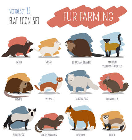 marten: Fur farming. Flat design. Vector illustration