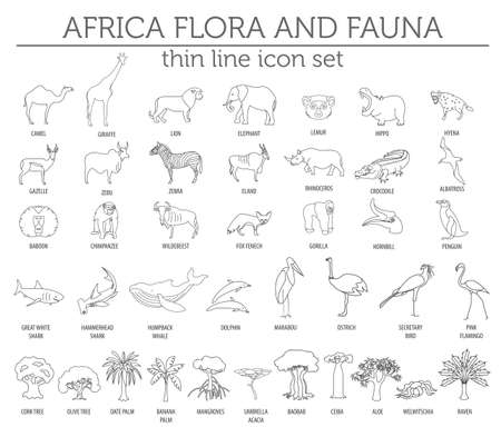 Thin line Africa flora and fauna elements.