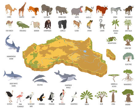 Flat 3d isometric Africa flora and fauna map constructor elements. Animals, birds and sea life isolated on white big set.