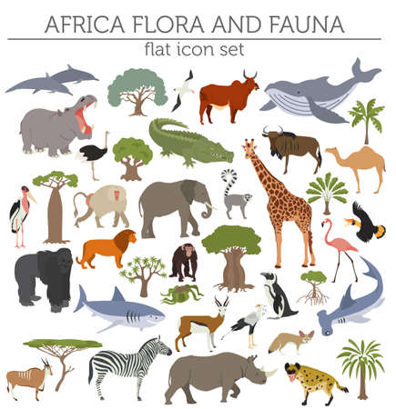 sea world: Flat Africa flora and fauna map constructor elements.