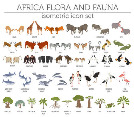 Flat 3d isometric Africa flora and fauna map constructor elements.