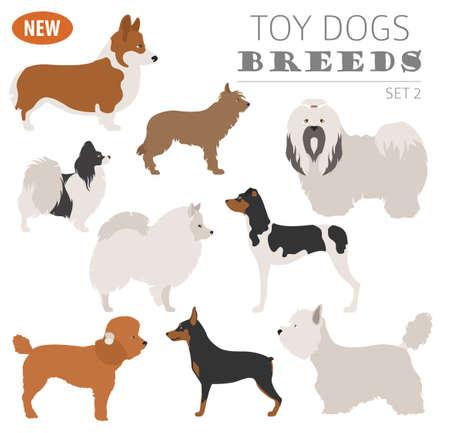 Un perro de juguete en miniatura cría, icono de conjunto aislado en blanco. Estilo plano. Ilustración del vector