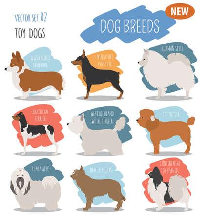 pembroke welsh corgi: Cool Miniature toy dog breeds, set icon isolated on white . Flat style. Vector illustration