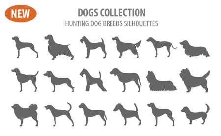 Cute Hunting dog breeds set icon isolated on white . Flat style. Vector illustration