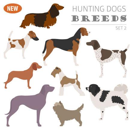Illustration of a Hunting dog breeds set icon isolated on white . Flat style. Vector illustration Illustration