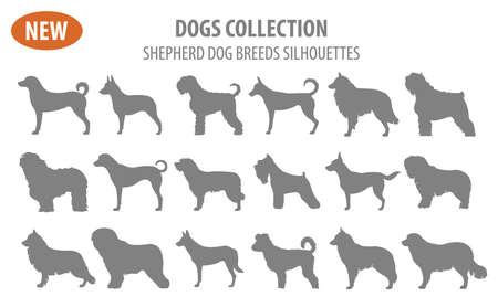 De rassen van de herdershond, herdershonden vastgesteld die pictogram op wit wordt geïsoleerd. Vlakke stijl. Vector illustratie