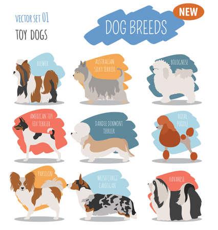 pembroke welsh corgi: Illustration of a  cute  toy dog breeds, set icon isolated on white . Flat style. Vector illustration