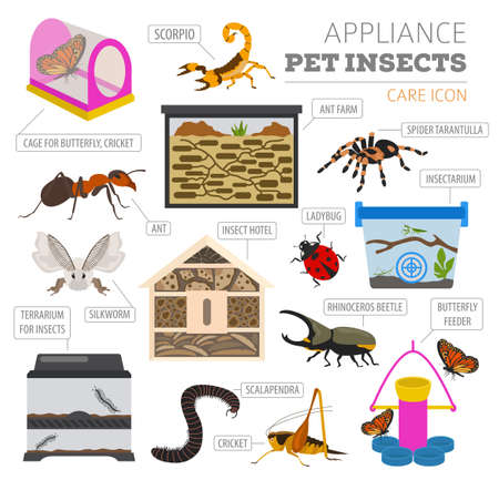 Pet appliance icon set flat style isolated on white. Insects care collection. Create own infographic about beetle, bug, butterfly, stick, mantis, spider, cricket etc. Vector illustration Illustration
