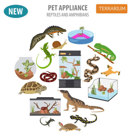 appliances: Pet appliance icon set flat style isolated on white. Reptiles and amphibians care collection. Create own infographic. Vector illustration