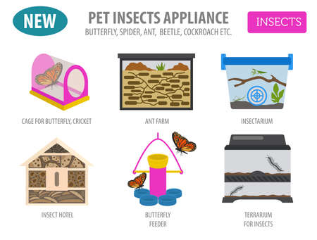 Pet appliance icon set flat style isolated on white. Insects care collection. Create own infographic about beetle, bug, butterfly, stick, mantis, spider, cricket etc. Vector illustration  イラスト・ベクター素材