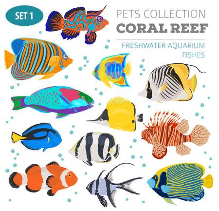 Poisson d'aquarium d'eau douce reproduit icon set style plat isolé sur blanc. Récif de corail. Créez votre propre infographie sur animal de compagnie. Illustration vectorielle Banque d'images - 84894791