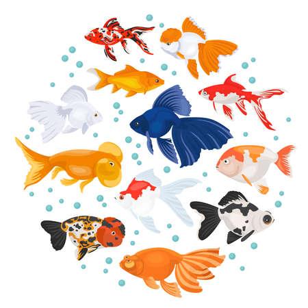 Freshwater aquarium fishes breeds icon set flat style isolated on white. Goldfish. Create own infographic about pets. Vector illustration. Illustration