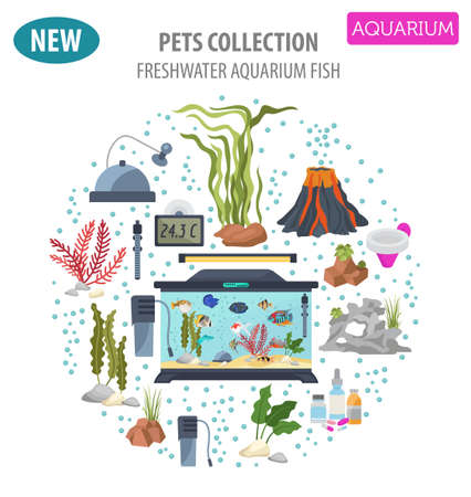 Aquarium appliance icon set flat style isolated on white. Freshwater fish care collection. Create own infographic about pet. Vector illustration. Illustration