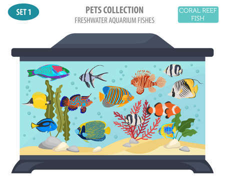 Freshwater aquarium fish breeds icon set flat style isolated on white. Coral reef. Create own infographic about pet. Vector illustration.