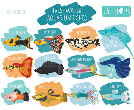 Freshwater fishes icon.