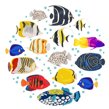 moorish idol: Freshwater aquarium fish breeds icon set flat style isolated on white background. Coral reef. Create own infographic about pet. Vector illustration