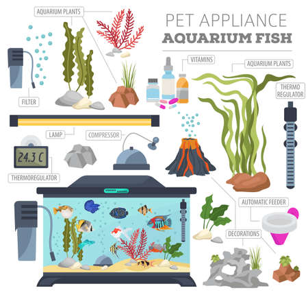 Aquarium appliance icon set flat style isolated on white background. Freshwater fish care collection. Create own infographic about pet. Vector illustration.