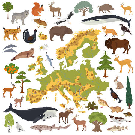 Flat European flora and fauna map constructor elements. Animals, birds and sea life isolated on white big set. Build your own geography infographics collection. Vector illustration Illustration