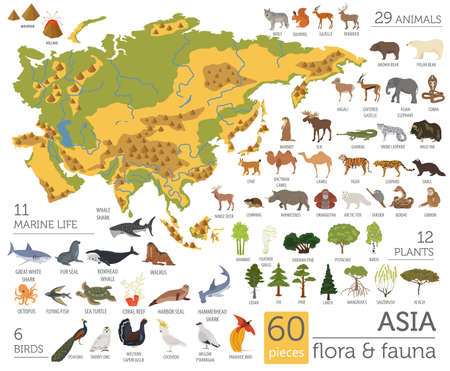 Flat Asian flora and fauna map constructor elements. Animals, birds and sea life isolated on white big set. Build your own geography infographics collection. Vector illustration Banco de Imagens - 86904398